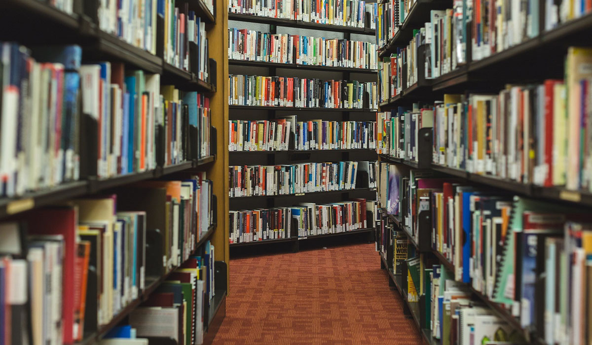 Library Stacks Image